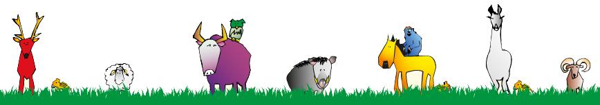 Zeichnungen Tiere Wildpark